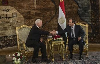 U.S. VP visits Egypt on first Mideast tour since Trump's Jerusalem decision