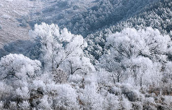 Frost scenery at Riyuexing scenic resort in Zuoquan, China's Shanxi