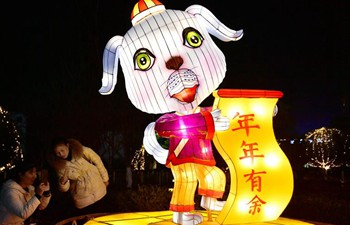 People enjoy festive lanterns in Hubei
