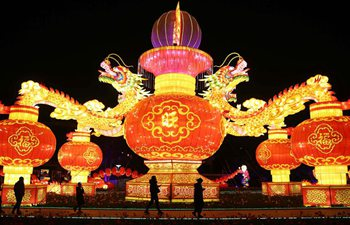 Kunming: Expo Garden sets up light show to greet Spring Festival