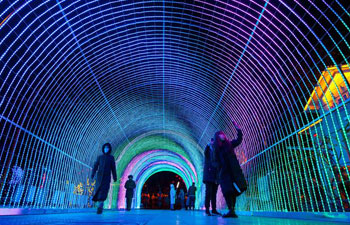 Lantern fair held in China's Inner Mongolia
