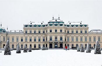 Heavy snow hits Vienna