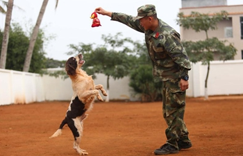 Police dog trainers and their dogs celebrate Xiaonian in S China
