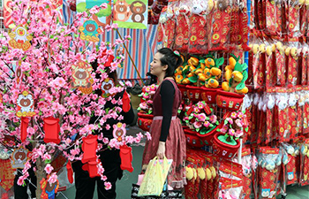 2018 Lunar New Year Fair held in Hong Kong