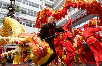 Chinese Lunar New Year celebrated in Netherlands