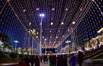 Light shows held to celebrate Spring Festival in China's Hubei