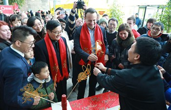 Chinese Spring Festival Fair held in Dublin