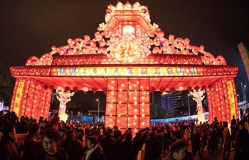 People enjoy festive lanterns in Donghu Lake of Wuhan
