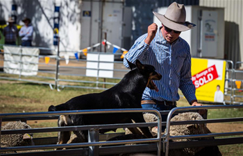 Royal Canberra Show held in Australia