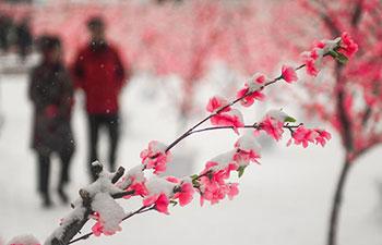 Heavy snowfall hits NE China's Jilin Province