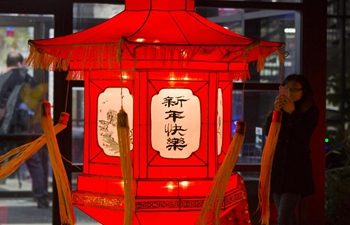 In pics: 2018 Toronto Qinhuai Lantern Festival