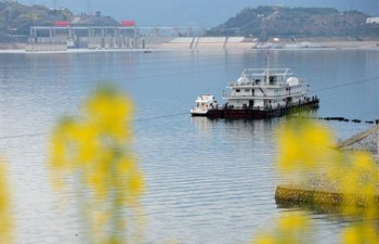 Scenery of rape flowers nearby Three Gorges Dam in C China