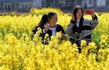 Blooming cole flowers attract tourists in China's Jiangxi
