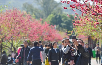 People enjoy spring scenery in SE China's Fuzhou