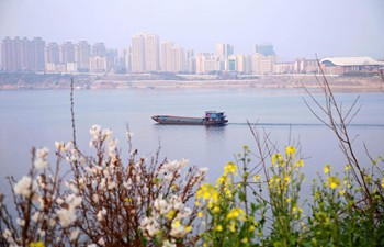 Spring scenery across China