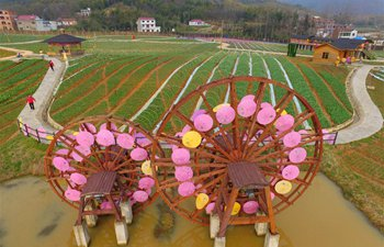 Rural scenery at Changjianghe Village in China's Henan