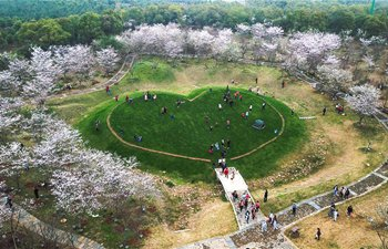 Spring flowers bloom across China