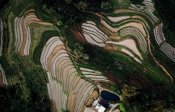 Aerial photos show spring view of fields at Sanzhang Village in S China
