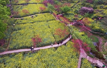 Spring scenery in Sichuan Fine Arts Institute in China's Chongqing
