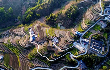 Scenery of Fengyan Terraces in NW China's Shaanxi