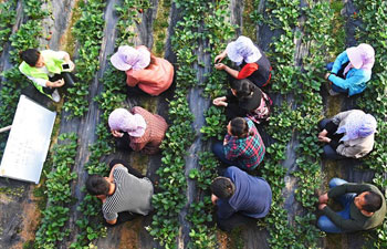 Special experts offer on-the-spot supports to farmers in China's Shandong