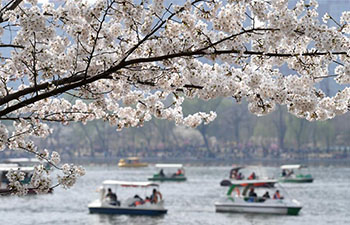 Visitors enjoy cherry blossoms at Yuyuantan Park in Beijing