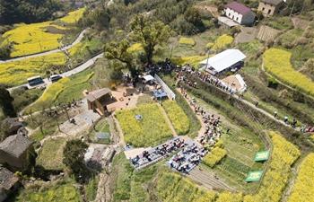 Cole flower fields help boost tourism in Qiantan Township, E China
