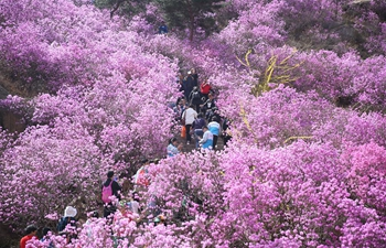 People enjoy spring flowers across China