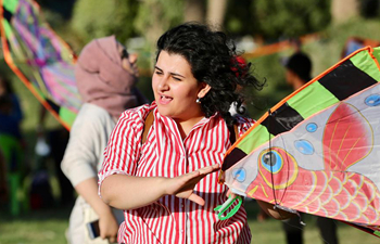 Kite festival held in Baghdad, Iraq
