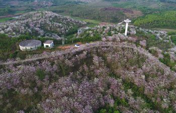 Spring scenery of Nanning, south China's Guangxi