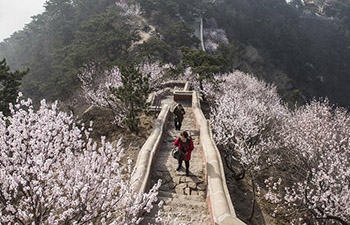 People enjoy blooming flowers across China
