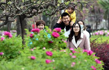 Tourists visit peony garden in Luoyang