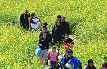People view cole flowers in Caogang Town, China's Henan