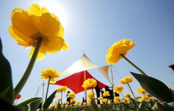 China brimming with vigor during springtime