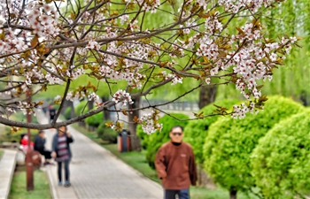 People enjoy spring scenery at Yuandadu Park in Beijing