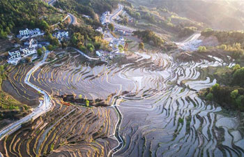 Bird's-eye view of terraced fields on Wuyun mountain in C China
