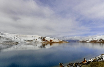 Spring scenery of Yamdrok Lake in China's Tibet