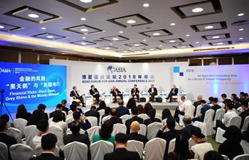 Session on financial risks held in Boao