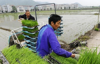 In pics: farm work across China