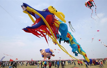 Kite fair held in Weifang, China's Shandong