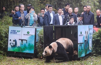 Giant panda bases restored after Sichuan earthquake