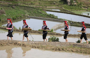Farming culture festival held in China's Yunnan