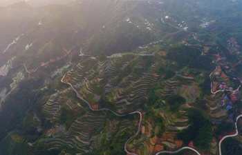 In pics: terraced fields in south China's Guangxi