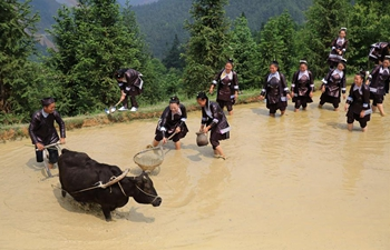 Ploughing festival celebrated in SW China's Guizhou