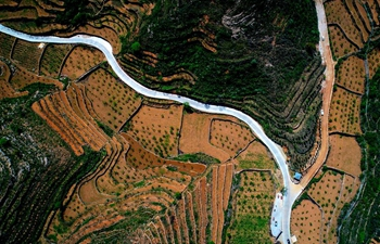 In pics: terraced fields and roads in N China's Hebei