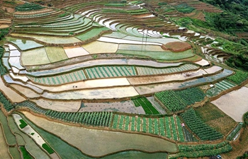 Aerial view of terraced fields in Hanshan, S China's Guangxi