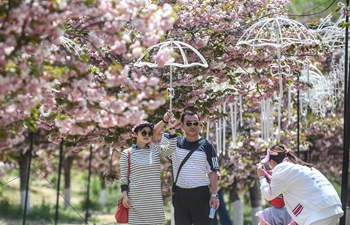 In pics: 203 cherry garden in Dalian, NE China's Liaoning