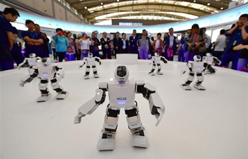 In pics: robots featured at Silk Road expo in China's Xi'an