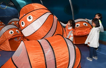 All night camp makes children closer to marine animals at Ocean Park in Qingdao