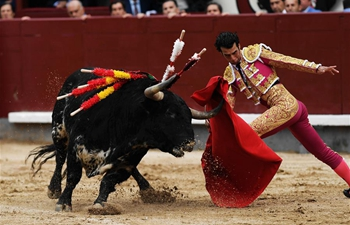 Bullfight held at Plaza de Toros de Las Ventas in Madrid, Spain